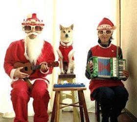 Новый год, новогодние праздники, новогодние каникулы, юмор новогодний, приколы новогодние, шутки новогодние, встреча Нового года, про Новый год, новогоднее, http://parafraz.space/ юмор, гости, встреча праздника, ёлка, рассказы юмористические, юмор, смех, ржач, настроение праздничное, Рождество, Сочельник, рождественский, шутки рождественские, приколы рождественские, встреча рождества, про Рождество, Рождественское,