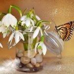 Я рисую весну на стекле…