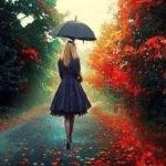 Как же красиво на улице осенью в дождь…