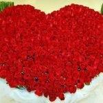 Миллион алых роз — оригинал и переделки песни