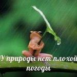 У природы нет плохой погоды — оригинал и переделки песни
