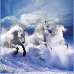 Три белых коня — оригинал и переделки песни