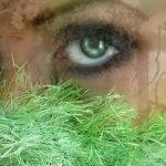 У беды глаза зеленые — оригинал и переделки песни