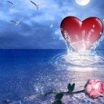 Кричалки на День влюбленных