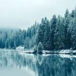 Голубая тайга — оригинал и переделки песни