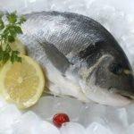 Рыбный квест — игра для корпоратива